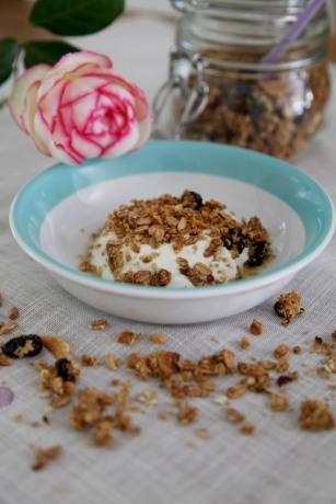 granola-rose-hoch